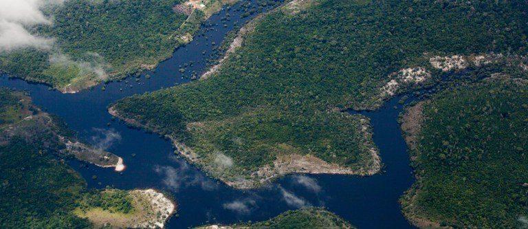 Desmatamento na Amazônia cai mais de 32% em agosto